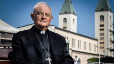 Photo of D.Pavičić VL:Da nije bilo pape Franje, plan protivnika Međugorja ostvario bi se – zabranili bi ga!